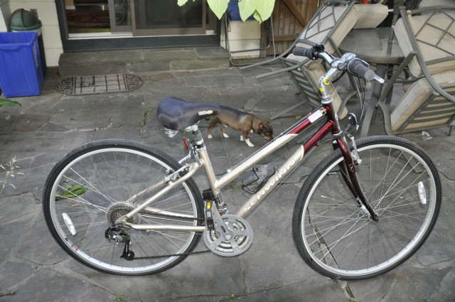 Bike 002.jpg